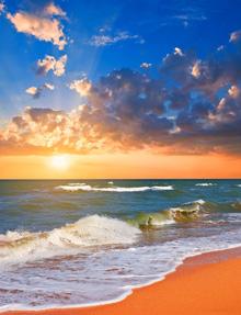 beachwave5