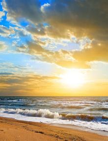 beachwave8